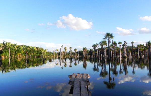 Lagoa das Áraras